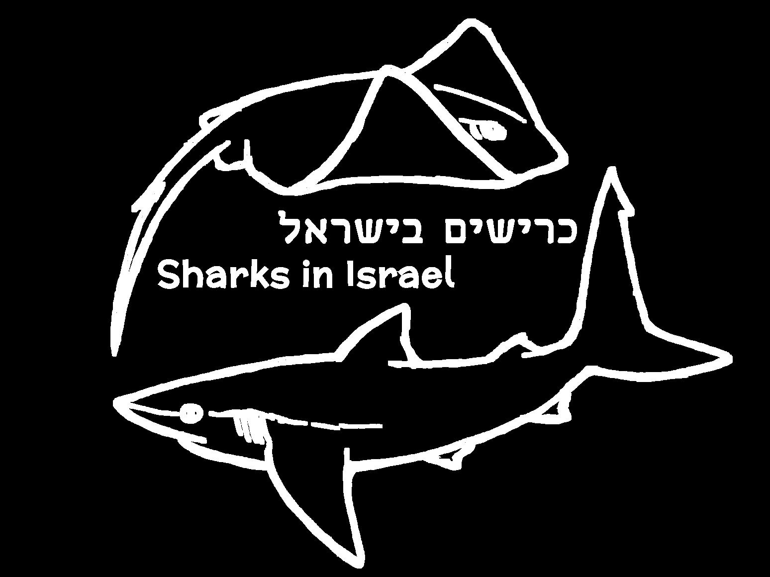 לוגו כרישים בישראל כריש וטריגון במעגל